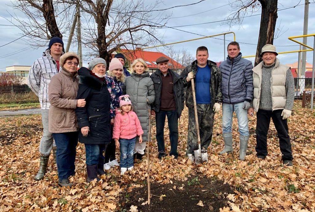 Из Белоруссии в Белоус: депутат от Партии Роста вместе с жителями поселка высадила аллею каштанов